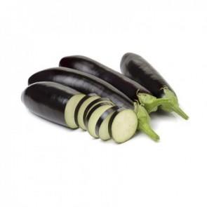 Anamur F1 Patlıcan Fidesi