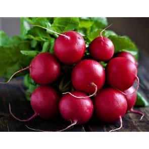 Fındık Turp (Cherry Belle) Tohumu